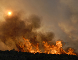 How to cope with wildfire smoke