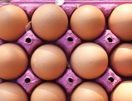 Eggs recalled due to salmonella risk